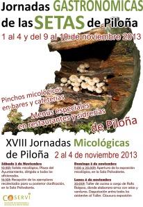cartel_jornadas_setas (1)